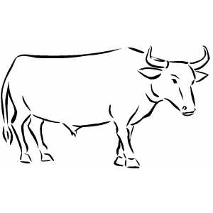 coloring pages of ox - photo#2