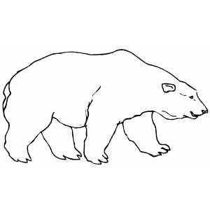 polar bear printable coloring pages - free printable polar bear template new calendar template