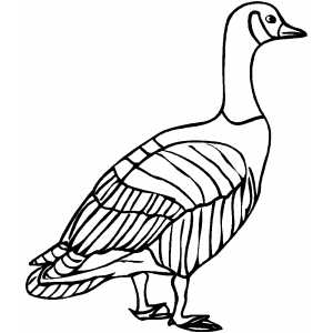 Coloring Pages Of Goose