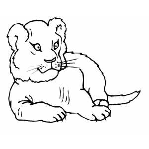 Small lioness coloring sheet for Lioness coloring pages