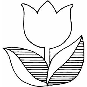 Flower Coloring Sheets On Single Tulip Free Sheet