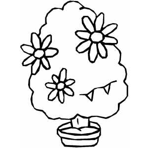 Parts of Plants Coloring Page http://www.quadoceangroup.com/xw-parts-of-a-plant-coloring-sheet/