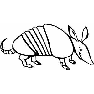 smiling armadillo coloring sheet