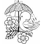 Birds Free Coloring Sheets